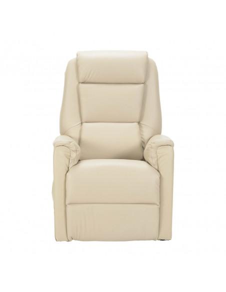 Sessel mit Aufstehhilfe, 2 Motoren. Small. Bezug aus Leder